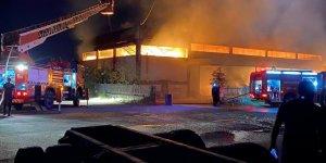 Manisa'da ahşap fabrikasında yangın