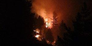 Bolu Aladağ Yaylası'nda çıkan orman yangını kontrol altına alındı