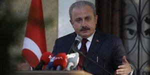 Şentop: Fransa'nın esas rahatsızlığı Türkiye'nin Afrika'da etkin oluşuyla ilgilidir