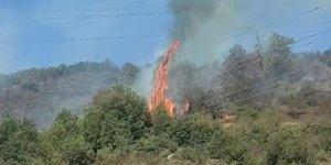Çıkan yangında 2 dönüm ormanlık alan yandı