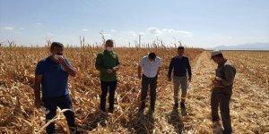 Karapınar'da fırtınada zarar gören tarım alanları incelendi