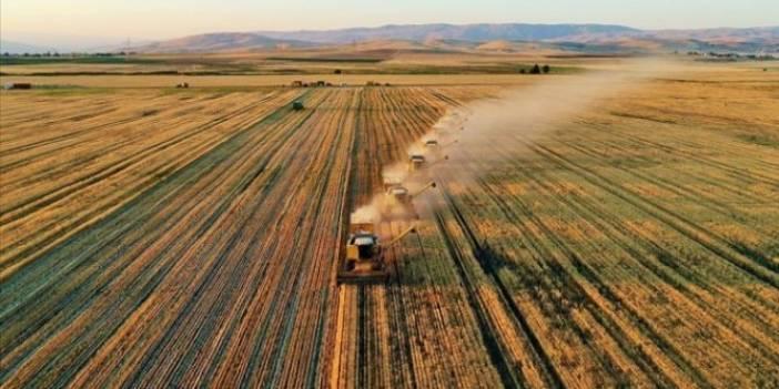 Katma değerli tarımsal ürünler kırsaldaki refahı yükseltecek