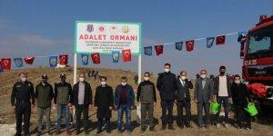 Seydişehir'de fidanlar toprakla buluştu