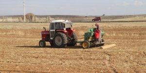 Beyşehir Gölü Havzasında çiftçiler pandemi döneminde de mesaisini sürdürüyor