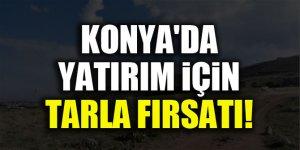 Konya'da yatırım için tarla fırsatı!