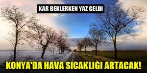Kar beklerken yaz geldi! Konya'da hava sıcaklığı hissedilir derecede artacak