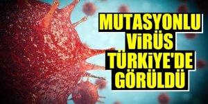 Mutasyonlu virüs Türkiye'de!