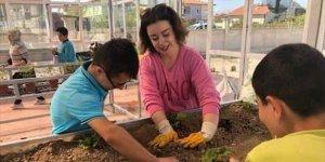 Konya'da gıda atıkları kompost oluyor