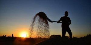 Konyalı çiftçiler, Cumhurbaşkanı Erdoğan'ın müjdesine sevindi