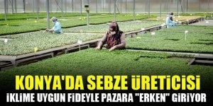 """Konya'da sebze üreticisi iklime uygun fideyle pazara """"erken"""" giriyor"""