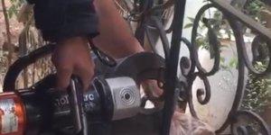 Başı korkuluğa sıkışan köpeği itfaiye personeli kurtardı