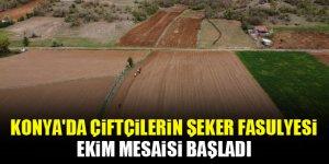 Konya'da çiftçilerin şeker fasulyesi ekim mesaisi başladı