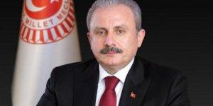 TBMM Başkanı Şentop, Kuzey Makedonya Eğitim ve Bilim Bakanı Carovska'yı kabul etti