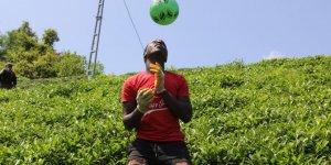 Afrikalı çay işçileri molalarını futbol oynayarak değerlendiriyor