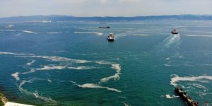 Deniz salyası ağları duman etti