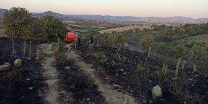 Arpa ekili tarla yangında zarar gördü