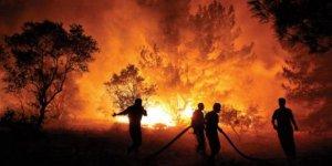 Yaktığı ateş ormana sıçradı, 155 bin TL ceza aldı