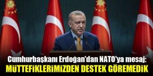 Cumhurbaşkanı Erdoğan'dan NATO'ya mesaj: Müttefiklerimizden destek göremedik