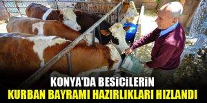 Konya'da besicilerin Kurban Bayramı hazırlıkları hızlandı