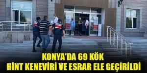 Konya'da 69 kök Hint keneviri ve esrar ele geçirildi