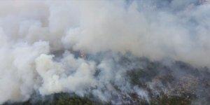 Denizli'nin Acıpayam ilçesinde orman yangını çıktı