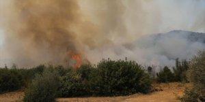 Adana Yüreğir'de makilik ve ormanlık alanda çıkan yangın kontrol altına alındı