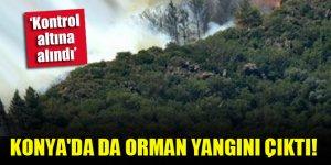 Konya'da da orman yangını çıktı!