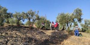 Tarım arazisinde çıkan yangın söndürüldü