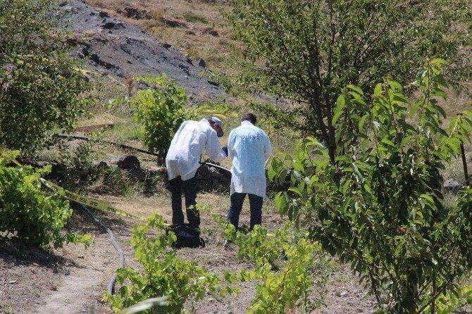 Baba ve oğlu toprak kavgasında öldürüldü