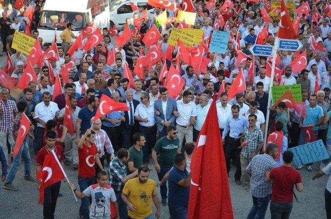 Adilcevaz'da demokrasi ve bayrak yürüyüşü
