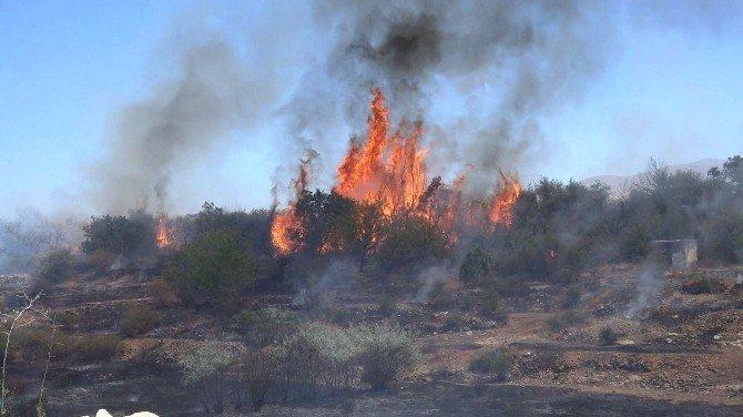 Bahçe yangınına belediye ekipleri müdahale etti