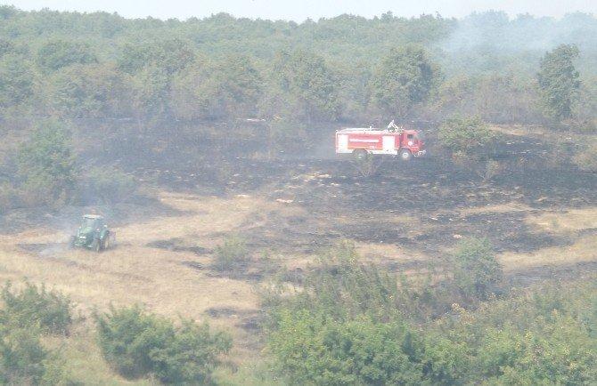 Hayrabolu'da ormanlık alanda yangın çıktı