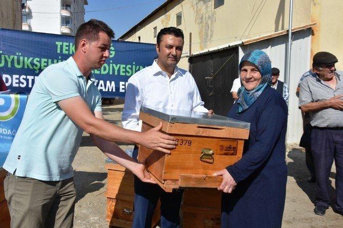 Malkara'da 184 Üreticiye 994 Arı Kovanı Dağıtıldı