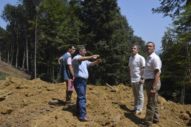 Sarıyayla'daki orman yangınları için müdahale yolları açılıyor