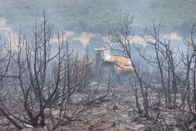 Tavşanlı'da 3 hektar ormanlık alan yandı