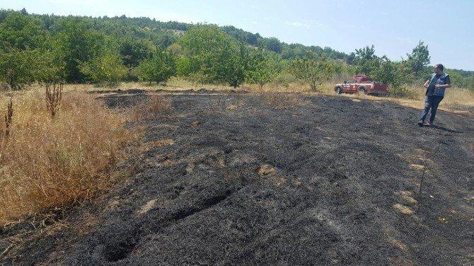 Alıç köyünde yangın