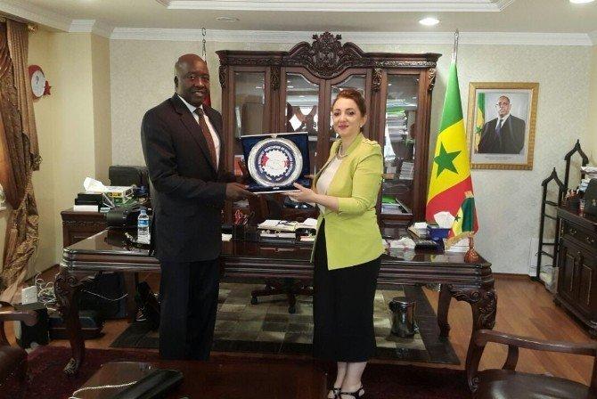 Türkiye, Senegal ile ekonomik ticari işbirliği antlaşmaları yapacak