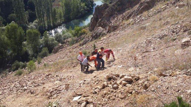 Şiran'da trafik kazası: 2 ölü, 1 yaralı