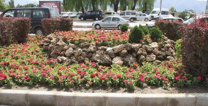Binlerce çiçek toprakla buluştu