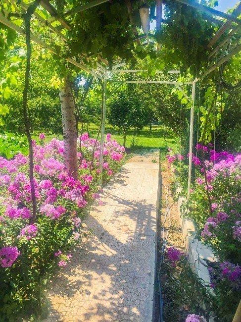 Meram en güzel bahçesini seçti