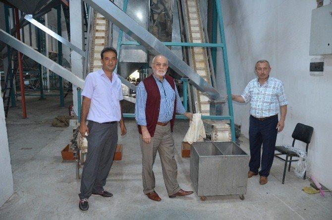 Fiskobirlik tesislerinde lazerli deneme fındık kırımı yapıldı
