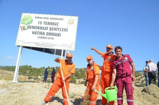 """Tosya'da """"15 Temmuz Demokrasi Şehitleri Hatıra Ormanı"""" kuruldu"""