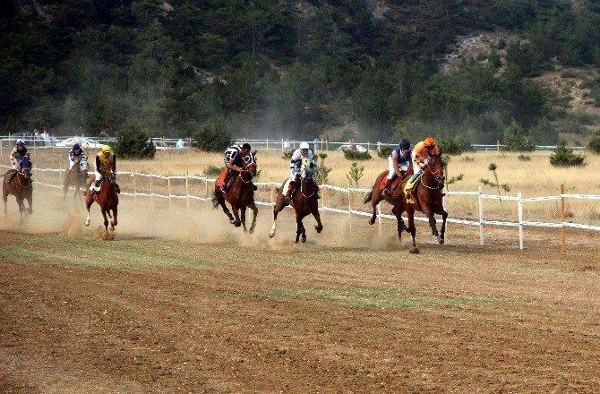 Taşköprü'de at yarışları nefes kesti