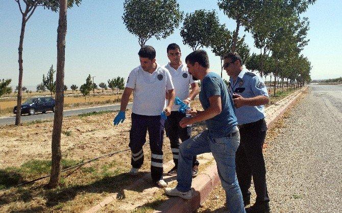 Yolu kesilen müteahhidin 200 bin lirası gasp edildi