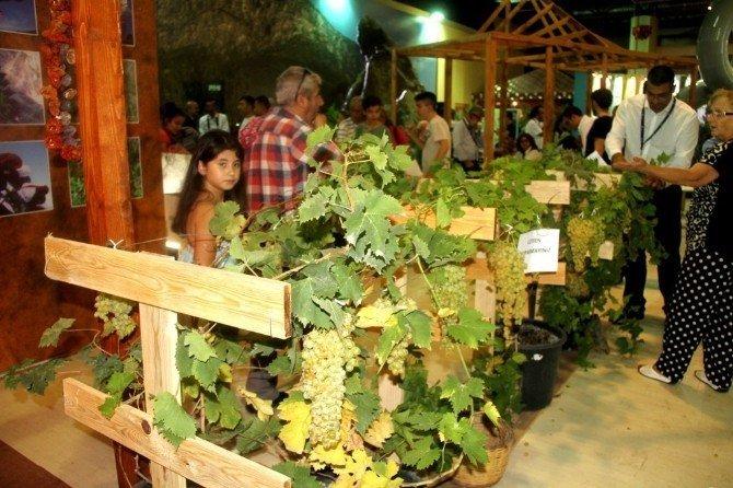 İzmir Fuarı'nda Sultaniye üzümüne büyük ilgi