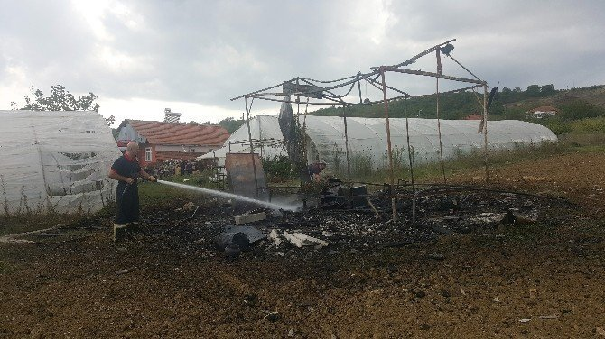 Evlerin arkasındaki serada çıkan yangın korkuttu