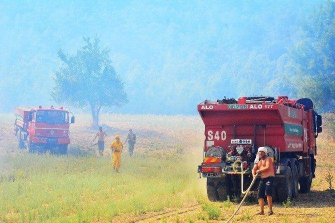 Orman Bölge Müdürü Mehmet Çelik yangınları değerlendirdi