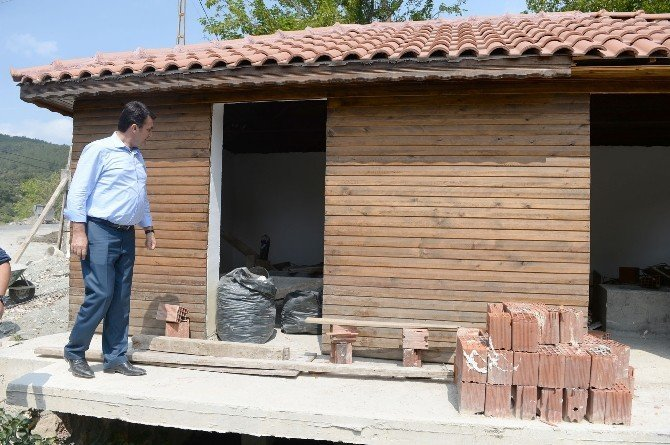 Bursa'da 120 yıllık değirmenler hayat buluyor