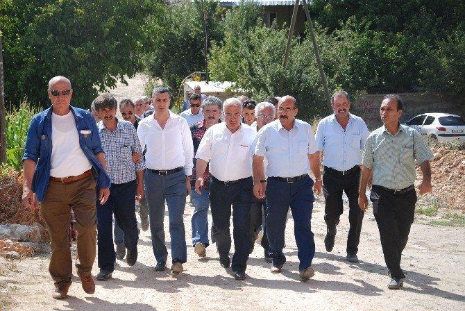 Büyükşehir Belediyesi, limon depolama tesisi yapacak