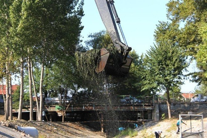 Çark Deresi, Büyükşehir ekipleri tarafından temizleniyor